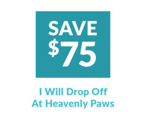 Drop off at Heavenly Paws